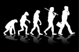 SEO Evolution